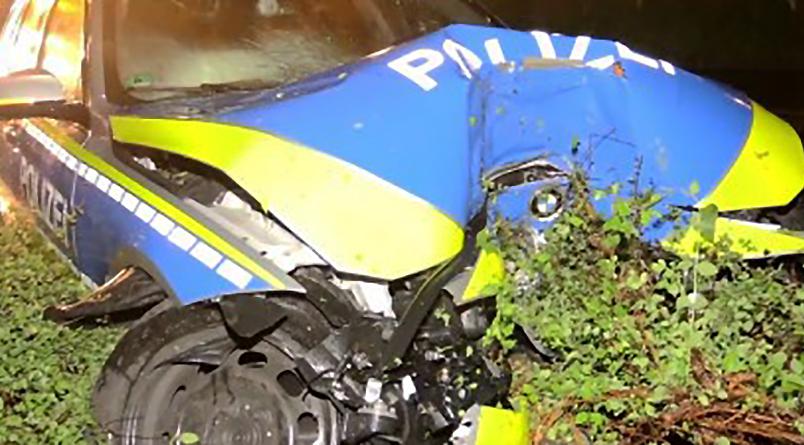 Новости: Патрульная машина врезалась в дерево