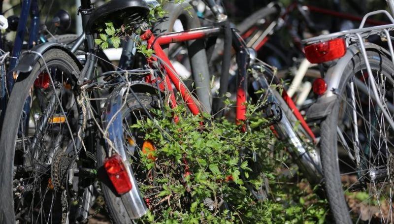 Новости: Ржавые велосипеды заполонили Кельн