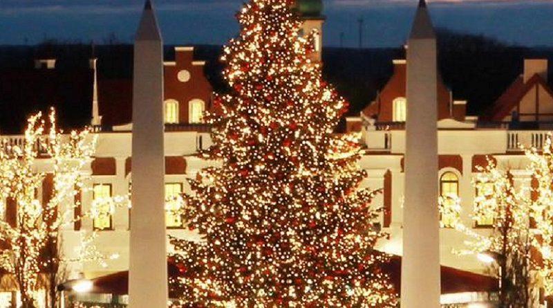рождественская елка в Гамбурге