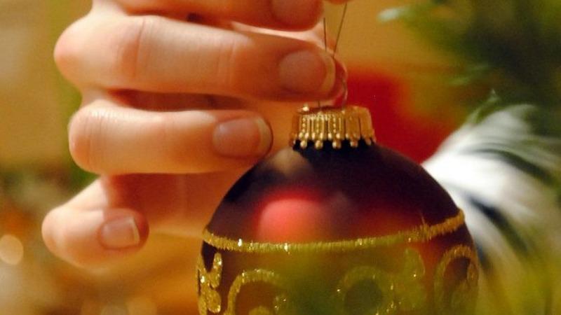 Досуг: Ель, сосна или пихта: какое дерево выбрать на Рождество?