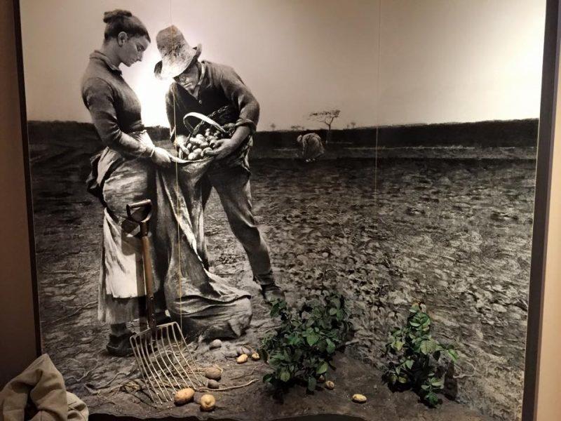 Культура: Самые необычные музеи Германии рис 5