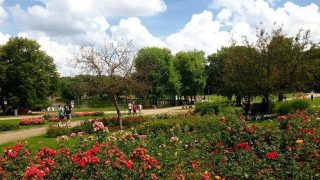 Отдых в Германии: парки Мюнхена