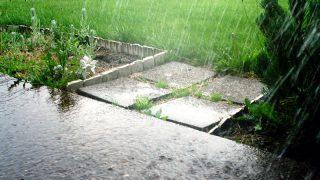 Германию ожидают дождливые выходные