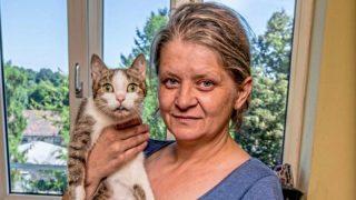 Хозяйка отдала последние сбережения на лечение кошки