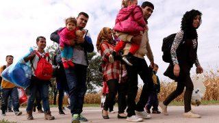 Болгария задействует войска для охраны границ