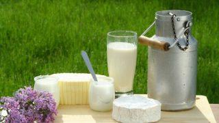 На сколько подорожали молочные продукты? (инфографика)