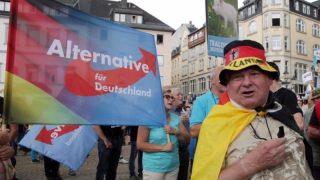 AfD называют партией русских немцев