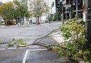 В Берлине объявлено штормовое предупреждение