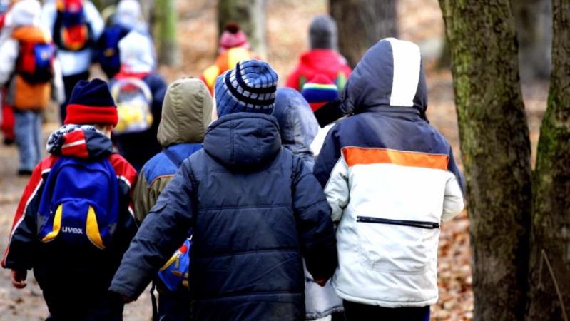 Происшествия: В Мюнхене воспитательница привязала ребенка к столбу собачьим поводком