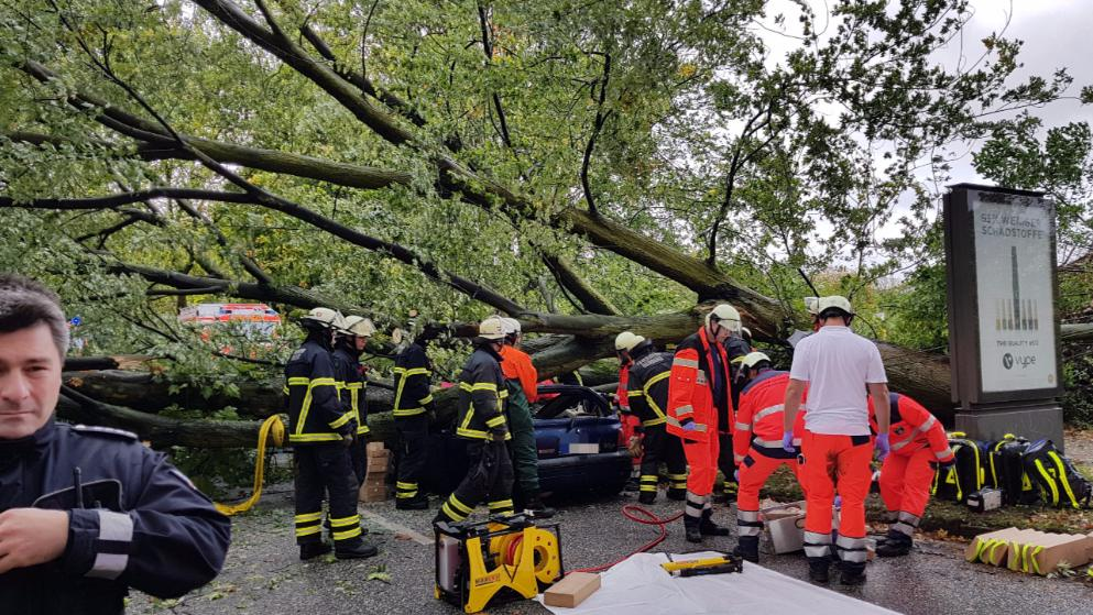 Погода: В Германии бушует ураган: есть погибшие