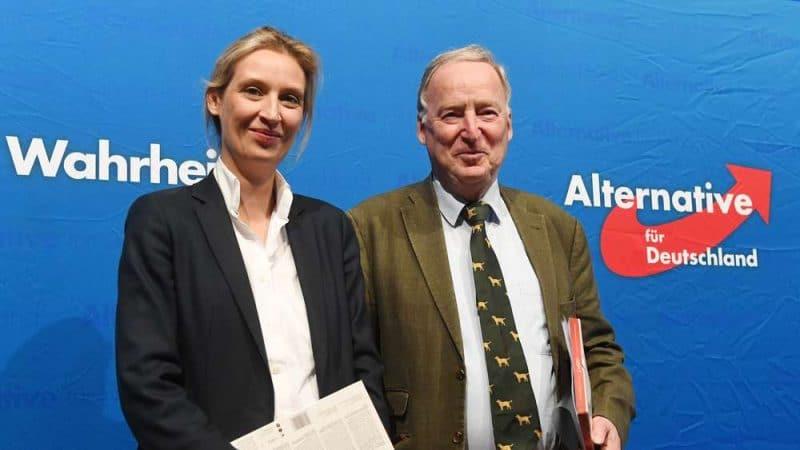 Политика: Немцы считают, что АдГ не задержится в бундестаге