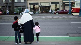 Германия депортировала только 23% беженцев, которым было отказано в убежище