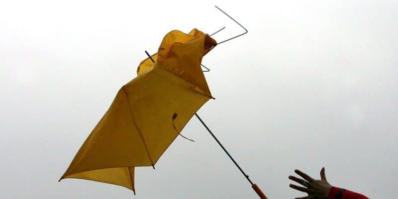 Происшествия: В Берлине и Бранденбурге пронесся новый ураган: есть погибшие и раненые