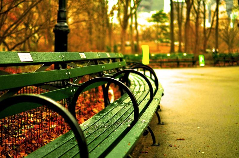 Погода: Вместо бабьего лета в Германию идут дожди