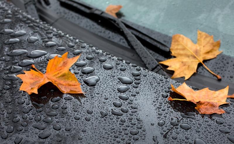Погода: Золотая осень покидает Германию