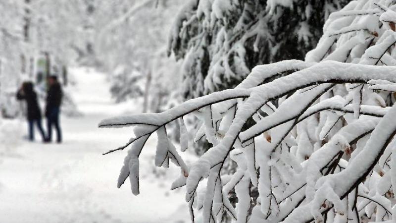 Погода: Синоптики обещают морозную и снежную зиму