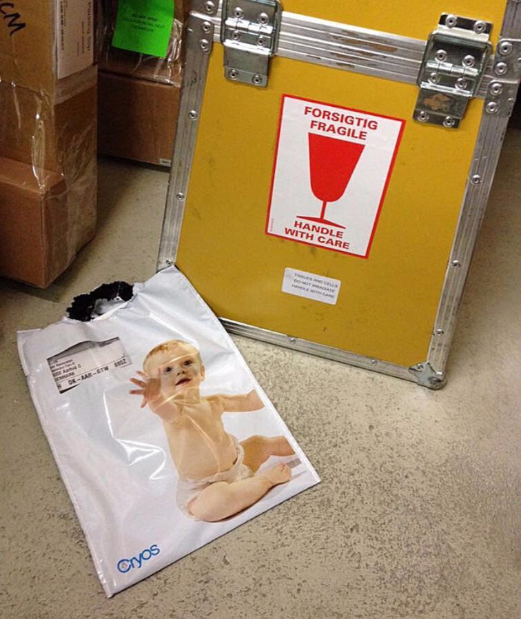 Происшествия: Вместо обуви в магазин доставили замороженную сперму