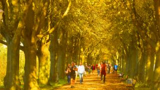 Зима подождет: в Германию идет потепление