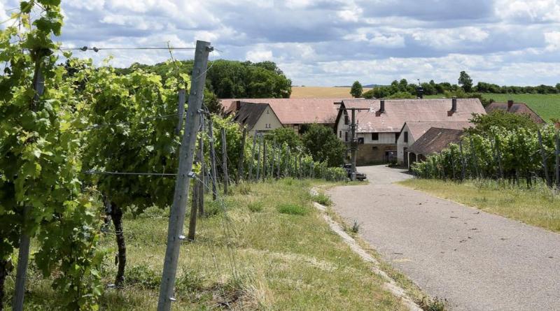 Происшествия: Из тюрьмы в Хайльбронне сбежало двое заключенных