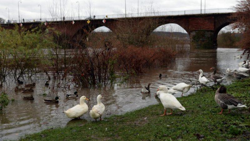 Происшествия: Юго-запад Германии страдает от наводнений рис 2