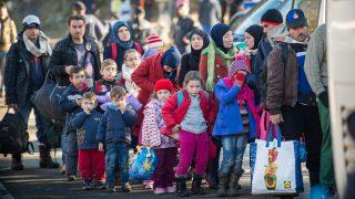 Новая миграционная политика: бери и уходи
