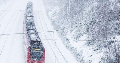 Число жалоб на транспортные компании постоянно растет