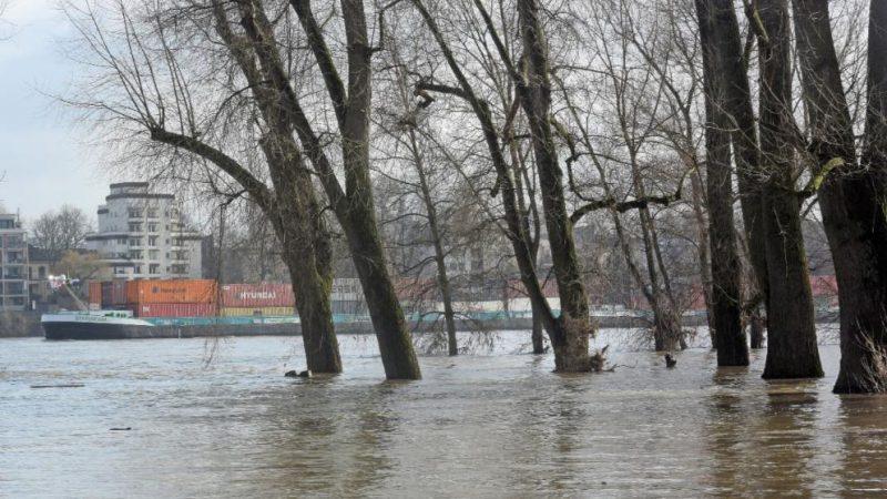 Погода: Мороз, гололед и наводнения: с чего начнется эта неделя?