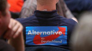 Интересные факты об «Альтернативе для Германии»