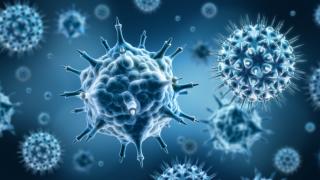 Вспышка ямагатского гриппа: погибло семь человек