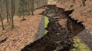 Таинственный оползень разрушил дорогу в лесу