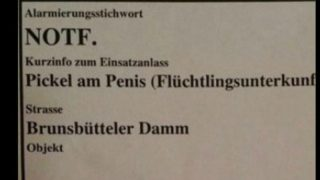 Самые дурацкие вызовы пожарной службы Германии