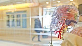 10 редких психических болезней, меняющих восприятие мира