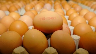 Какие яйца лучше покупать на Пасху?