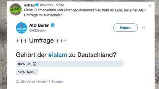 Большинство немцев считают, что ислам – часть Германии (+опрос)