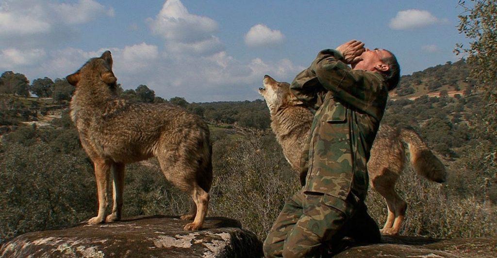 """Общество: Испанский """"Маугли"""" разочаровался в людях и хочет обратно к волкам"""