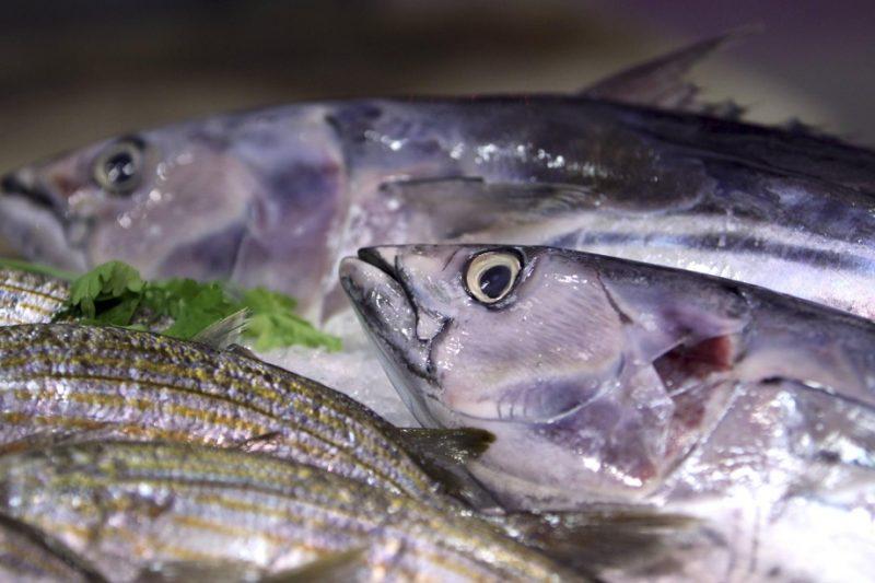 Общество: Свежая рыба: как в немецких супермаркетах обманывают покупателей