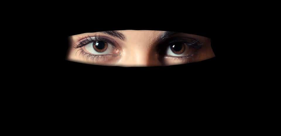 Отовсюду обо всем: В Дании женщинам запретили носить никаб и паранджу