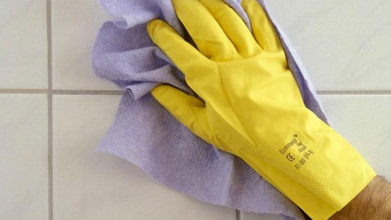 Полезные советы: Семь средств для поддержания чистоты в доме без агрессивной химии