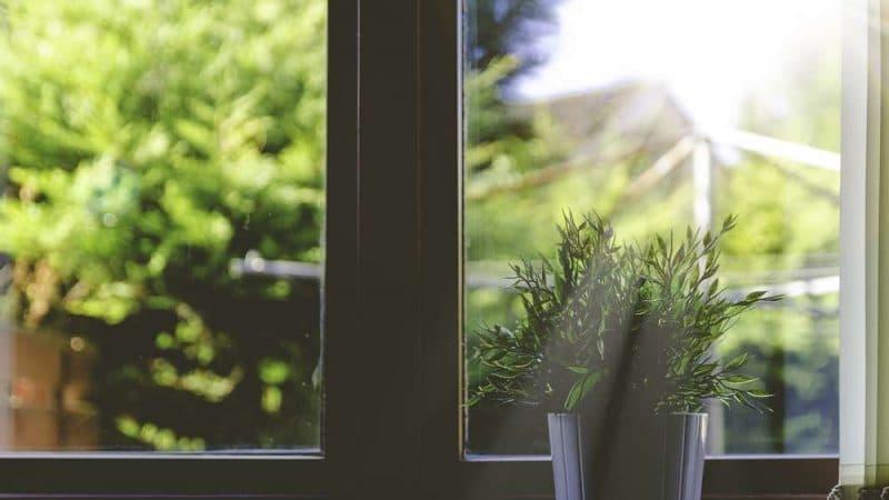 Полезные советы: Маленькие секреты: как охладить квартиру в жару без кондиционера