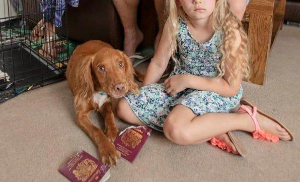 Отовсюду обо всем: Семья пропустила отдых всей своей жизни из-за собаки