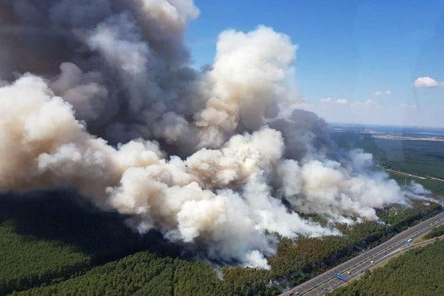 Происшествия: Огромный лесной пожар недалеко от Берлина пытаются взять под контроль