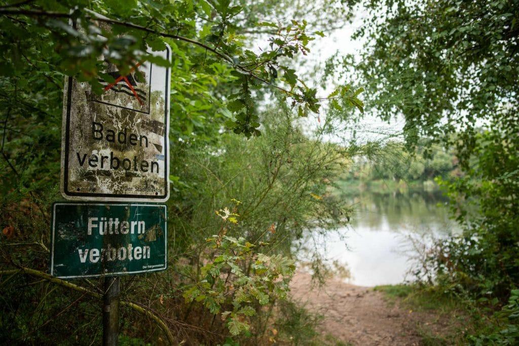 Происшествия: Доступ к озеру неподалеку от Дюссельдорфа закрыли из-за трехметровой анаконды