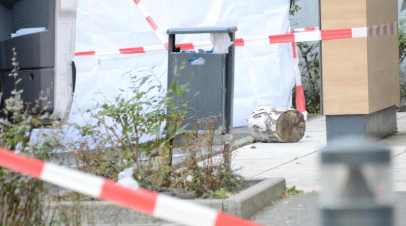 Происшествия: В Берлине ребенка убили поленом. Обновлено рис 3
