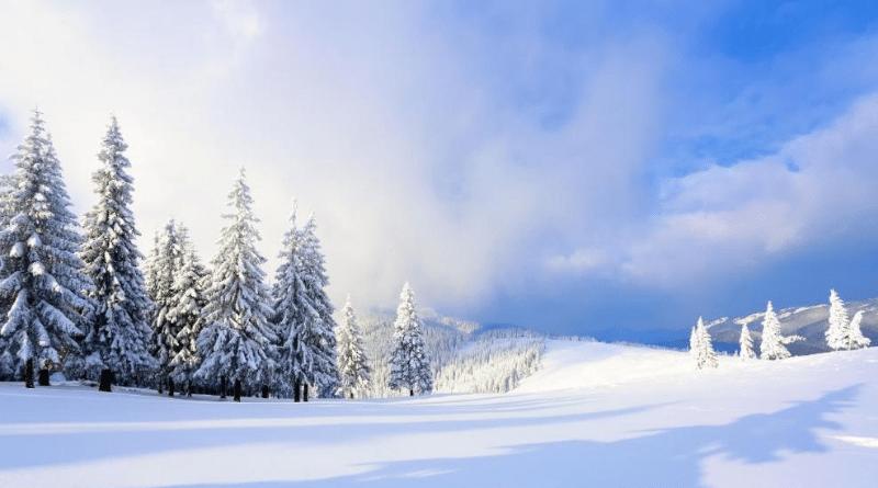 Погода: В Германии похолодает, но выпадет ли снег?