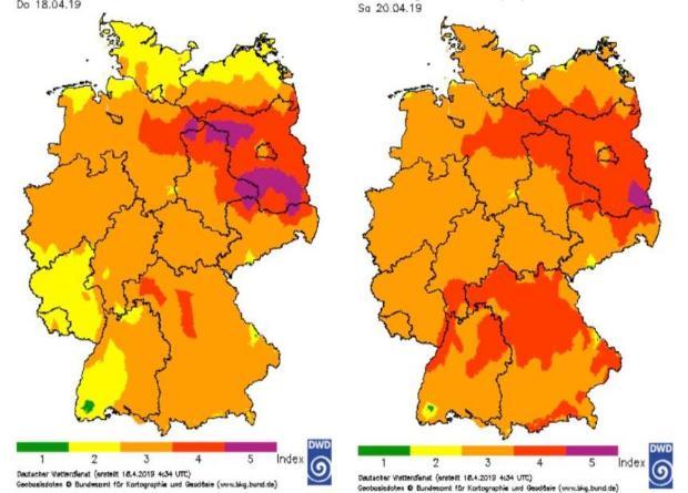 Общество: Из-за высокой опасности возникновения лесных пожаров во многих регионах Германии запретят пасхальные костры