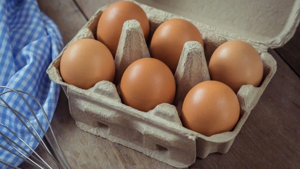 Полезные советы: Поэтому вы не должны использовать картонные лотки для яиц повторно