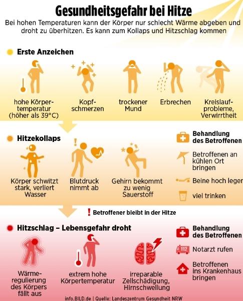 Происшествия: В Германии из-за жары умирают тысячи людей