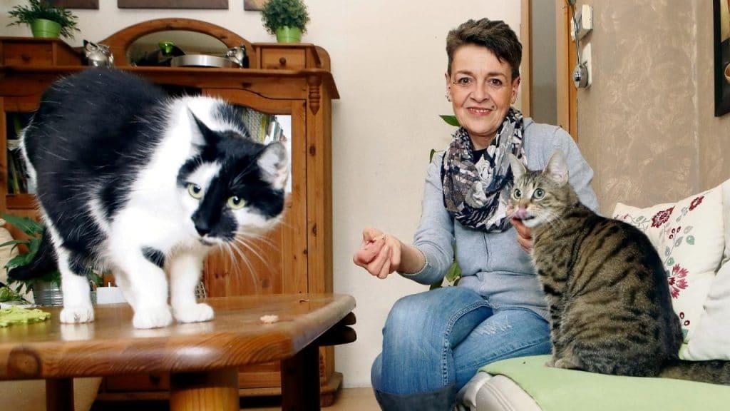 Общество: Жизнь в Германии: получательница Hartz-IV отказывается от всего необходимого ради любимых питомцев
