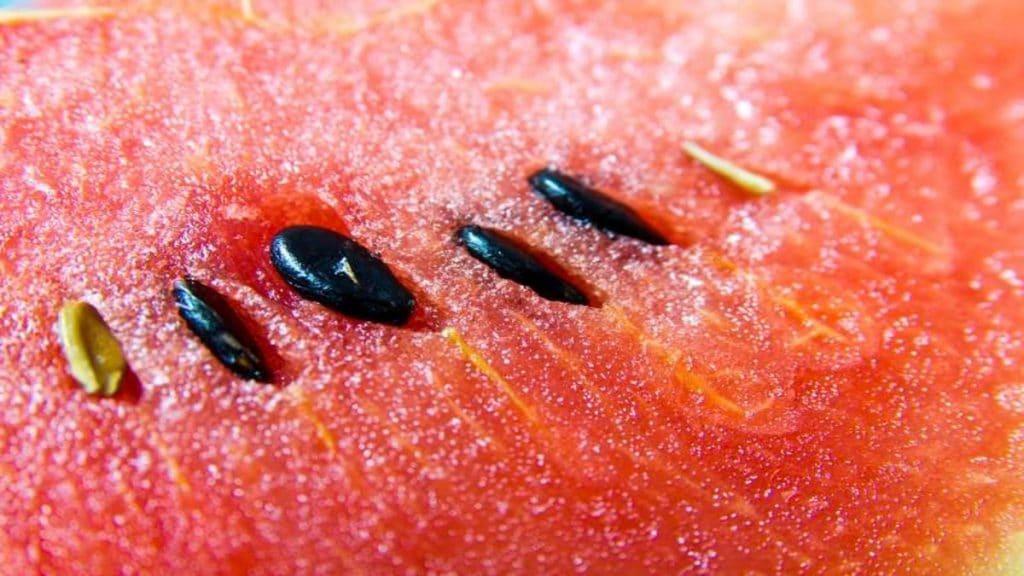 Полезные советы: Можно ли кушать арбузные семечки
