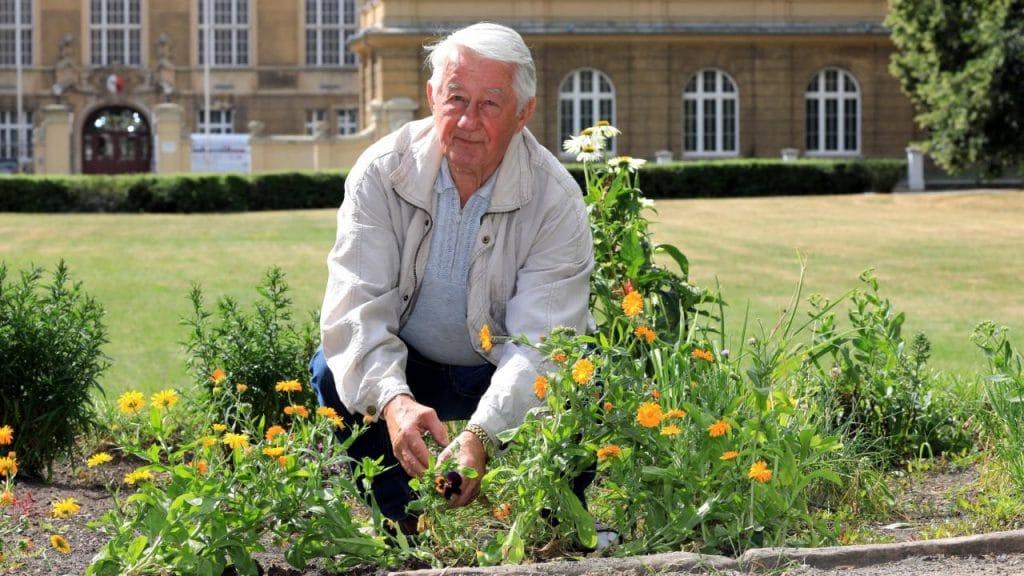 Общество: Посадил цветы на клумбе: за добрый поступок пенсионеру грозит штраф в €5 000
